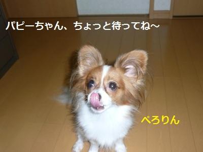 P2011090735.jpg