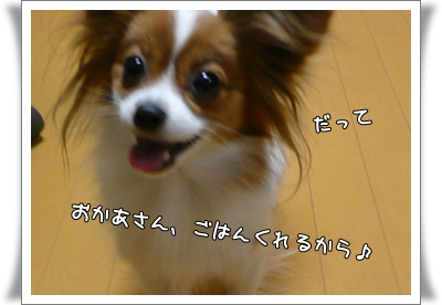 P211206332.jpg
