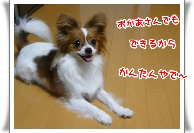 P240325032.jpg