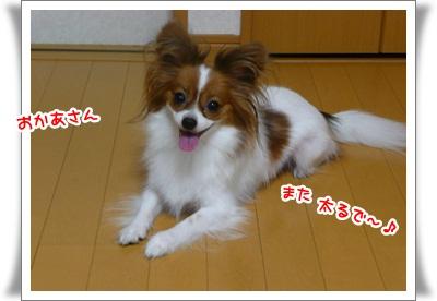P90409308.jpg