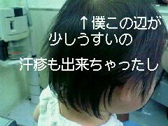moblog_505f620f.jpg