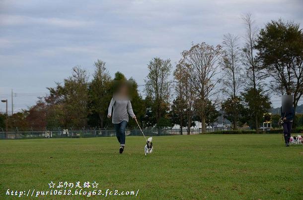 DSC_0144_201311140656109ad.jpg