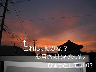 IMG_3755.jpg