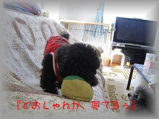 IMG_6824.jpg