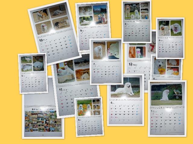 2011_11_15.jpg