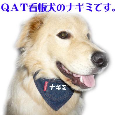 QualityArtTAKUMI 看板犬ゴールダー ナギミ