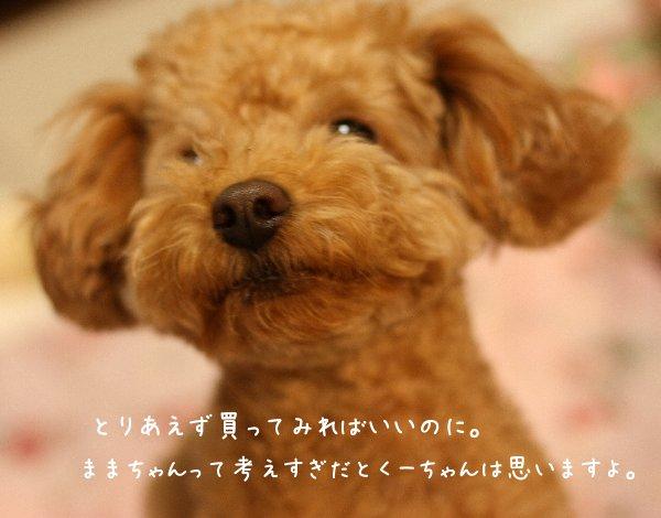 Img_0154-0.jpg