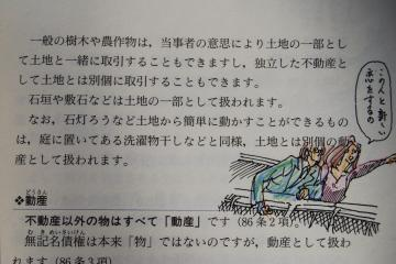 DSC_0037_convert_20120121174948.jpg