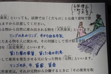 DSC_0038_convert_20120121175959.jpg