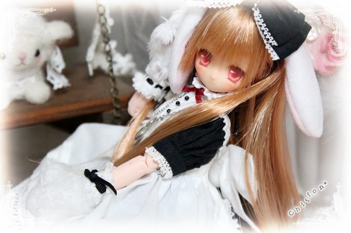 2012-12-12-02-014.jpg