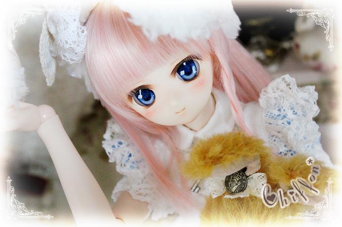 custom060-014.jpg
