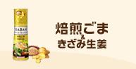 46時中4646日記-GABAN