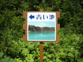 青い池看板