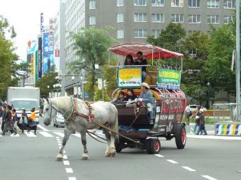 saf観光馬車