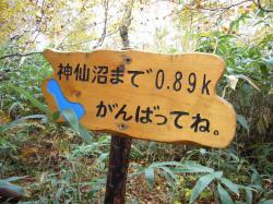 神仙沼あと1