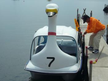スワンボート1