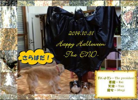 20141031_20.jpg