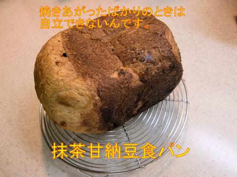 明日の朝が楽しみな食パン