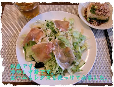 冷やし中華 お昼に息子と二人で食べました。