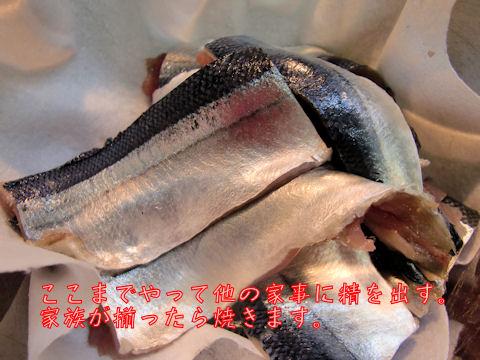 秋刀魚おろしおえました。