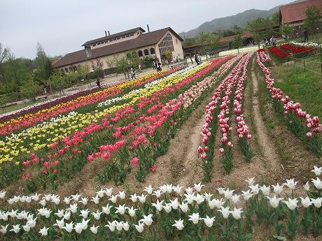 2011-05-03-16.jpg