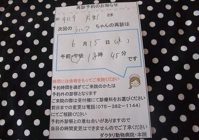 2011-06-01-05.jpg