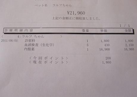 2011-06-01-06.jpg