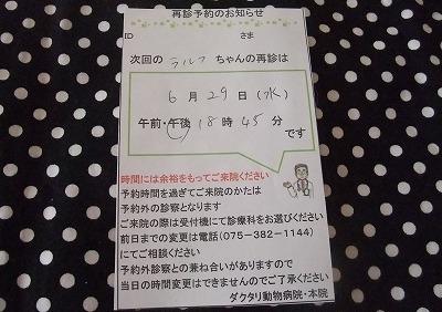 2011-06-15-09.jpg