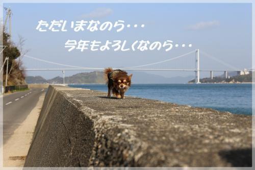 049_convert_20140105191819.jpg