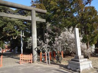 2014年03月07日 息栖神社・白梅