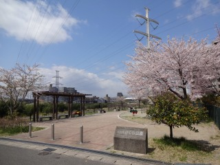 2014年04月19日 桜・泉区