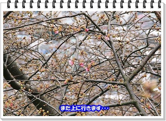 1079ブログNo12