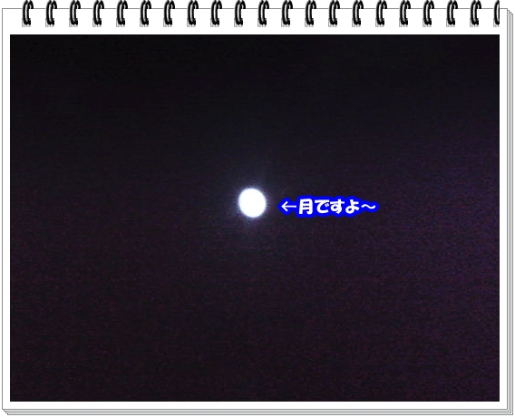 1114ブログNo3