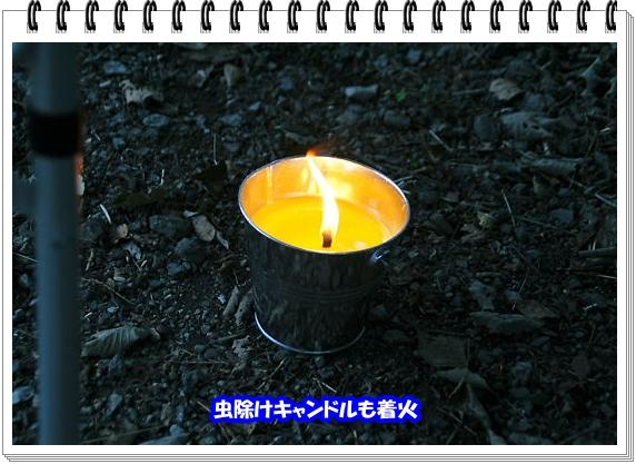 1271ブログNo5
