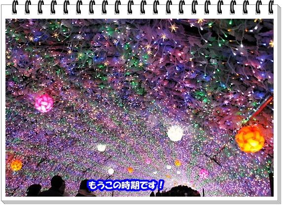 1369ブログNo1