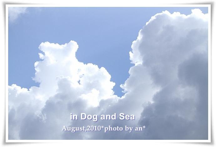 20100829_4158.jpg