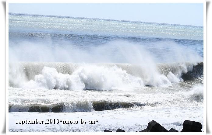 201009-9155.jpg