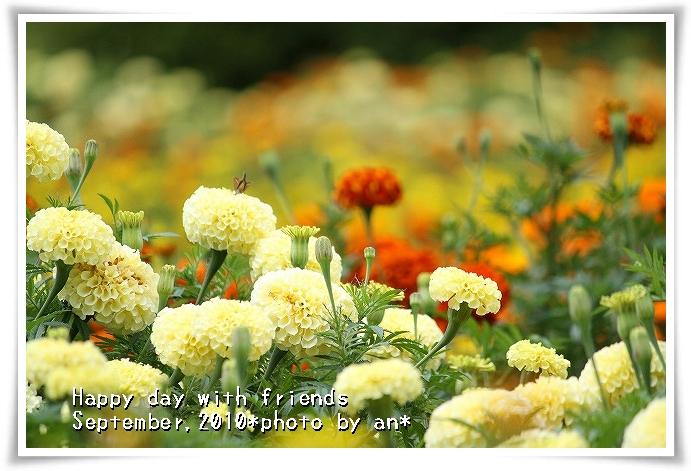 20100903_5019.jpg