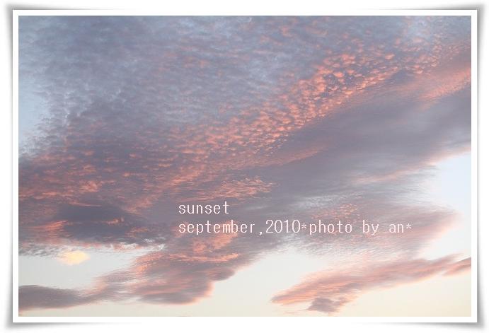 20100915_5115.jpg