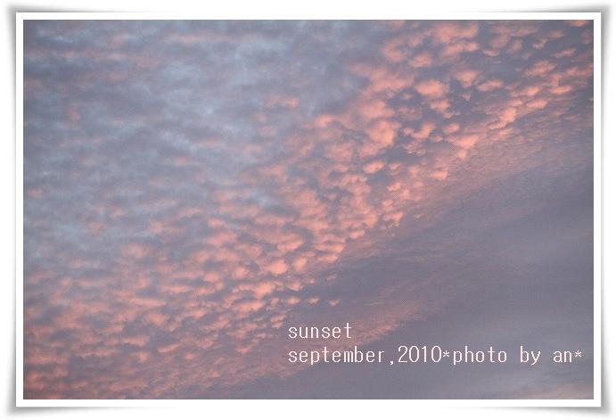20100915_5120.jpg