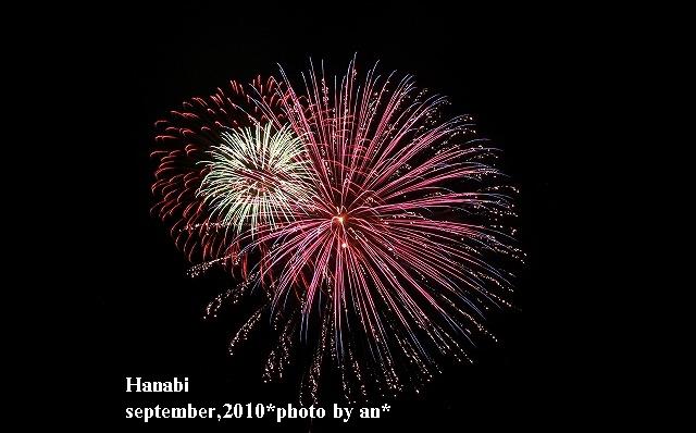 20100921_4926.jpg