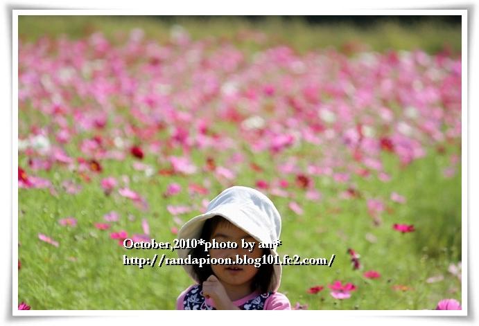 20101017_3633.jpg