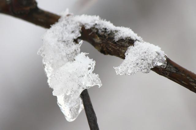 雪景色 027