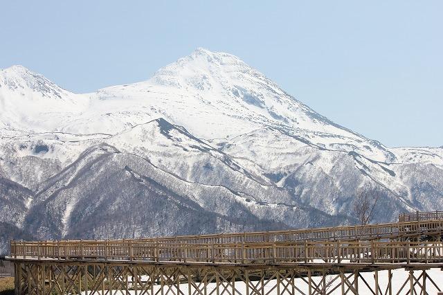 遊歩道と羅臼岳