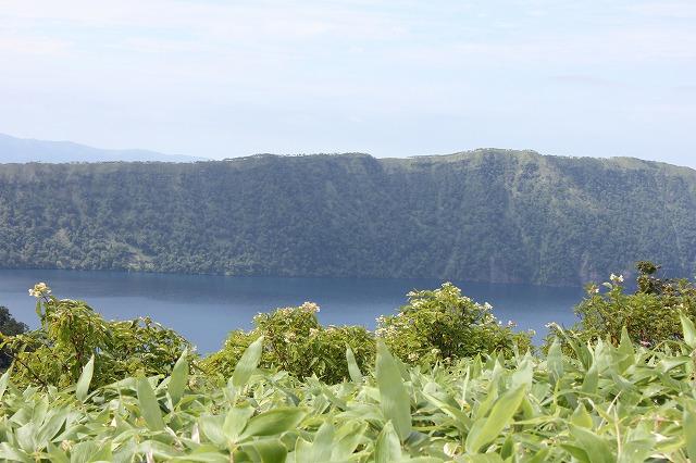 ノリウツギと摩周湖