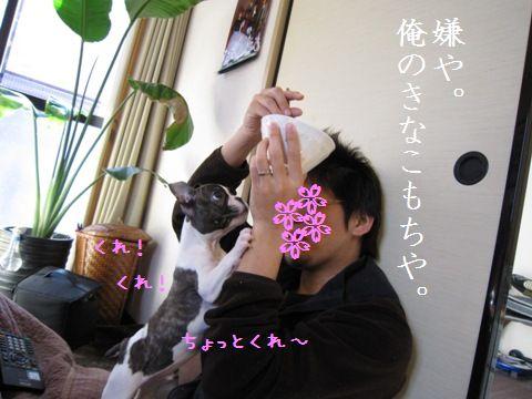 IMG_0552-1.jpg