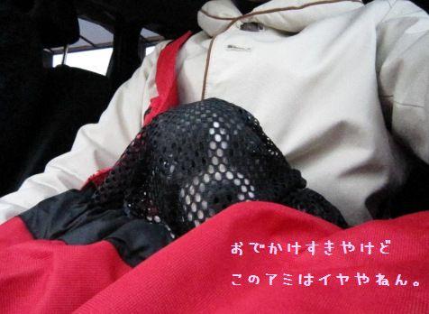 IMG_0607-1.jpg