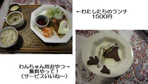 IMG_0872-.jpg