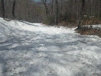 春の雪上歩行