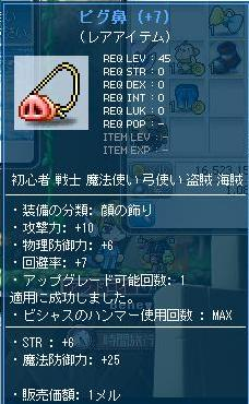 Maple110930_185630.jpg